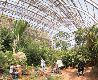 The Botanical Greenhouse